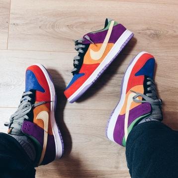 Nike Dunk 'Viotech'
