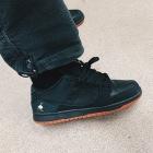 Nike Dunk SB x Staple 'Black Pigeon'